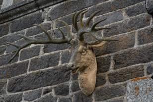 Emblème de cerf sur la façade de l'hôtel L'Annexe d'Aubrac