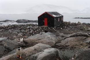 Antarctique-Antarctica-Peninsula-Port-Lockroy-Base-britannique
