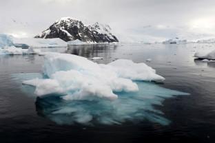 Antarctique-Peninsule-Antarctica-Growler-Bourguignon