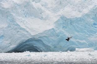 Antarctique-Peninsule-Antarctica-Paysage-6-Landscape