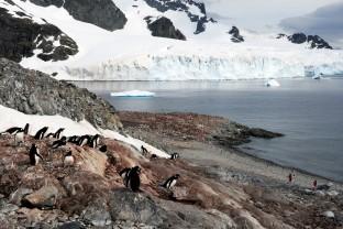 Antarctique-Peninsule-Antarctica-paysages-et-manchots