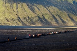 01-Joly-Islande-Iceland-Highlands-Rettir-Transhumance-Moutons-Fjallabak-Jokulgil