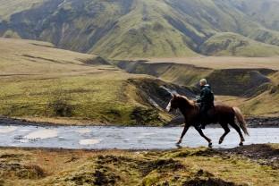 14-Joly-Islande-Iceland-Highlands-Rettir-Transhumance-Moutons-Fjallabak-Jokulgil