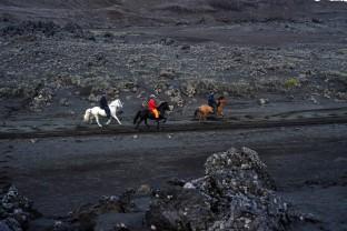 21-Joly-Islande-Iceland-Highlands-Rettir-Transhumance-Moutons-Fjallabak-Jokulgil