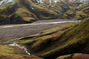 22-Joly-Islande-Iceland-Highlands-Rettir-Transhumance-Moutons-Fjallabak-Jokulgil
