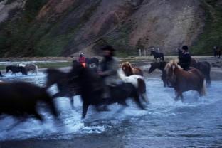67-Joly-Islande-Iceland-Highlands-Rettir-Transhumance-Moutons-Fjallabak-Jokulgil